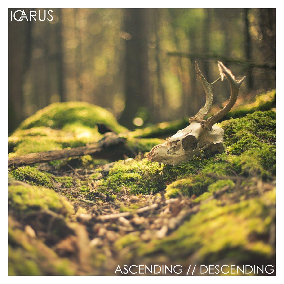 Icarus | Ascending / Descending