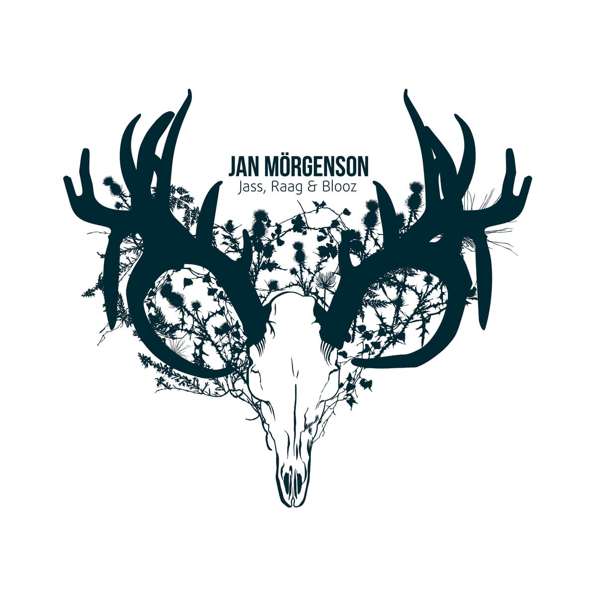Jan Mörgenson | Jass, Raag & Blooz