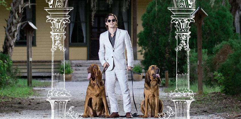 Pet Symmetry | Pets Hounds 12″