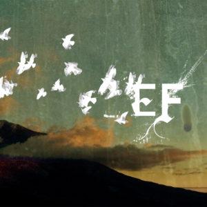 efgive